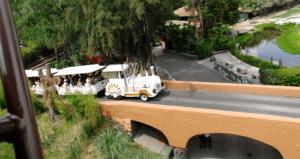 Tren Zoologico Guadalajara